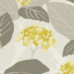 monaco grey yellow