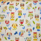 Ollie Owl PaintBox