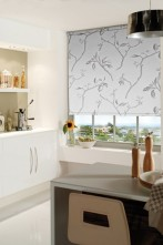 roller blind shade graphie